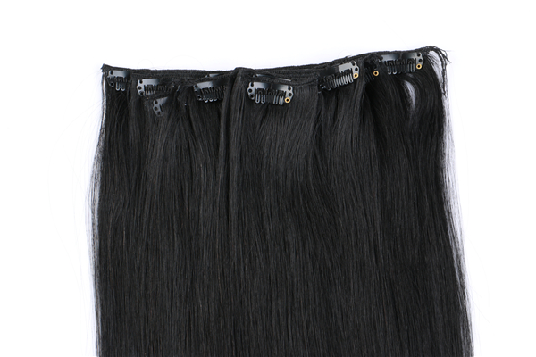 Clip in Human Hair Extensions 100g JF021