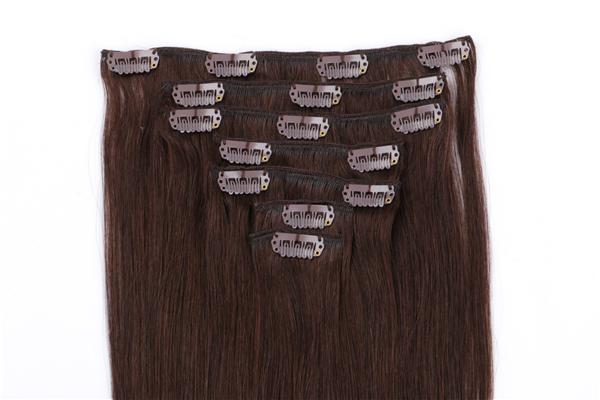 Clip in Human Hair Extensions 200g JF022