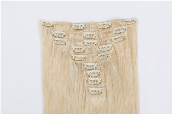 Best Quality Clip in Human Hair Extensions JF019
