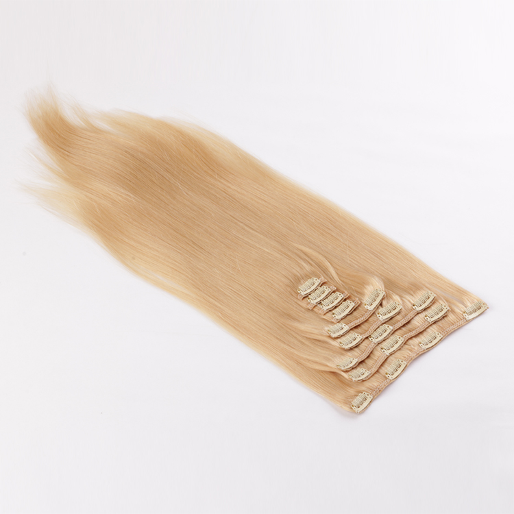 Cheap real clip in weave human hair clip on extensions SJ0073