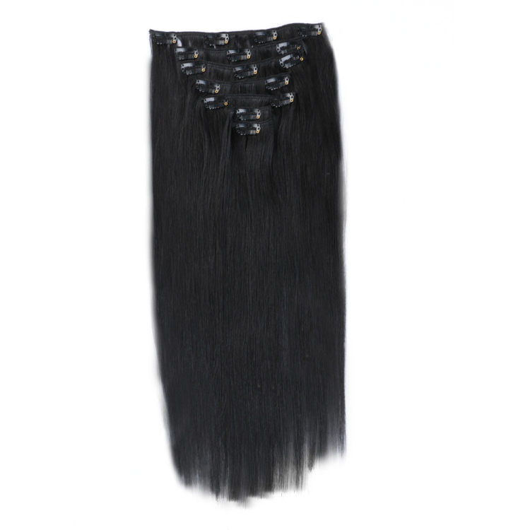 China clip in weave human remy hair extensions SJ0046