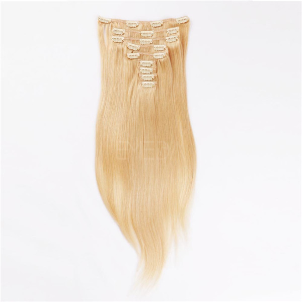 Clip in human hair extensions indian remy LJ027