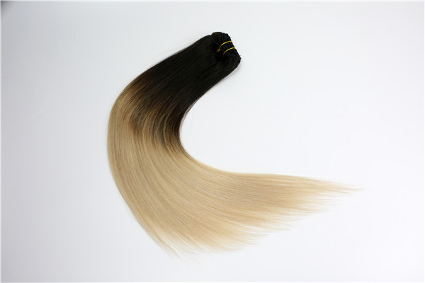 EMEDA Clip in Human Hair Extensions Ombre JF020